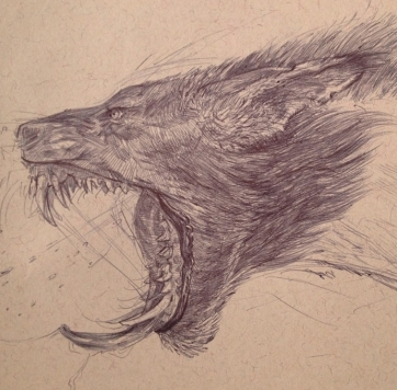 Werewolf drawing in ball point pen
